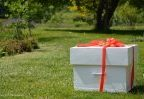 Który prezent dla niej będzie najlepszy?
